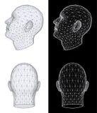 Cabeça humana. Ilustração do vetor Fotografia de Stock