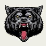 Cabeça irritada do lobo ilustração do vetor