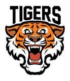 Cabeça irritada do tigre Imagens de Stock