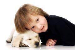 Cabeça no filhote de cachorro Imagens de Stock