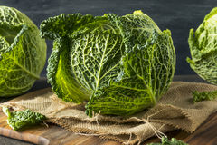 Cabeça orgânica crua do couve-de-milão Foto de Stock