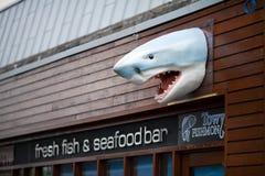 Cabeça plástica do tubarão em Carmarthen imagem de stock