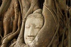 Cabeça tailandesa da arte da monge Fotos de Stock Royalty Free