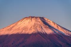 Cabeça vermelha Beni Fuji no lago Yamanaka durante o nascer do sol Imagens de Stock Royalty Free