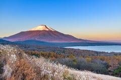 Cabeça vermelha Beni Fuji no lago Yamanaka durante a opinião franco do nascer do sol Fotos de Stock