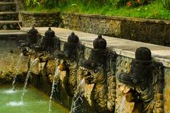 Cabeças das fontes da mola quente do Balinese Imagens de Stock Royalty Free