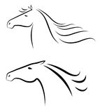 Cabeças de cavalos Fotos de Stock Royalty Free
