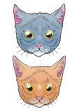Cabeças do gato Imagens de Stock