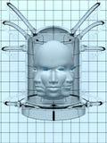 Cabeças do laboratório Imagens de Stock