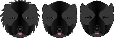 Cabeças do pastor caucasiano com lãs diferentes ilustração royalty free