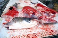 Cabeças dos peixes e carne de peixes Imagens de Stock Royalty Free