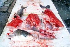 Cabeças dos peixes e carne de peixes Imagem de Stock