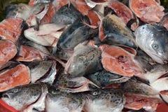 Cabeças dos peixes para a sopa Fotos de Stock