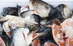 Cabeças dos peixes salmon no mercado Imagem de Stock