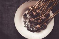 Cabeças e sementes secadas da papoila Fotografia de Stock Royalty Free