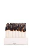 Cabeças queimadas fotografia de stock