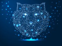Cabe?a de um lobo, ca?ador, animal Ilustra??o poligonal abstrata em escuro - fundo azul com as estrelas com formas do destruct fotos de stock
