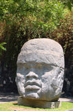 Cabeça de Olmec Fotos de Stock Royalty Free