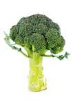 Brócolos uncooked frescos Imagens de Stock