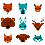 Cabeças bonitos dos animais ajustadas Fotos de Stock Royalty Free