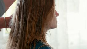 Cabeleireiro Combs com escova de cabelo o cabelo molhado do cliente antes do corte de cabelo no salão de beleza filme