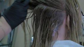 Cabeleireiro Does Hair Coloring no estúdio da beleza filme