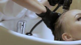 Cabeleireiro profissional Washing Female Hairs antes do corte de cabelo em um salão de beleza vídeos de arquivo
