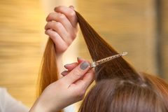 Cabeleireiro que penteia seu cabelo longo, vermelho de seu cliente no salão de beleza imagens de stock royalty free