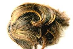 cabelo Foto de Stock