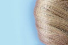 Cabelo bonito Luz - cabelo marrom O cabelo é recolhido em um bolo em um fundo azul com espa?o livre para o texto Para um cartaz o imagens de stock