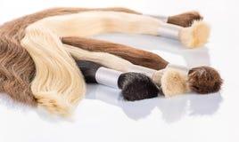 Cabelo colorido falso no fundo branco Cabelo para a extensão do cabelo fotografia de stock royalty free