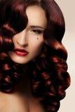 Cabelo Curly longo saudável. Foto de Stock Royalty Free