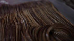 Cabelo da cor do cabeleireiro O cabeleireiro do estilista faz a coloração de cabelo Mãos do ` s do cabeleireiro em luvas pretas b video estoque