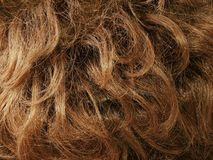 Cabelo de Brown Fotografia de Stock Royalty Free