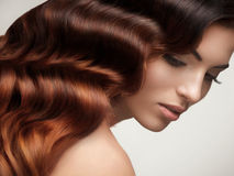 Cabelo de Brown. Retrato da mulher bonita com cabelo ondulado longo. Fotos de Stock Royalty Free