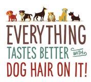 Cabelo de cão ilustração stock