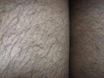 Cabelo e pele Imagens de Stock