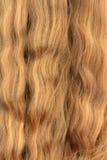 Cabelo fêmea Imagem de Stock Royalty Free