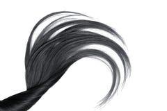 Cabelo natural preto, isolado em um fundo branco fotos de stock royalty free
