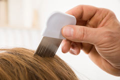 Cabelo paciente do ` s de Person Using Lice Comb On foto de stock