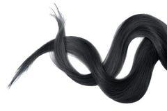 Cabelo preto isolado no fundo branco Rabo de cavalo bagunçado longo fotos de stock royalty free