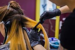 Cabelo profissional da coloração do cabeleireiro do cliente da mulher no estúdio imagens de stock royalty free