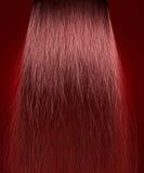 Cabelo vermelho crespo Fotos de Stock Royalty Free