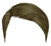 cabelos curtos do homem na moda louro marrom Estilo da beleza 3d realístico Imagens de Stock