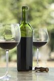 Cabernet Royalty Free Stock Photography