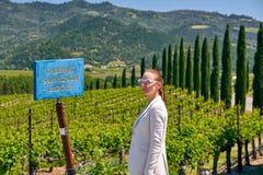Cabernet - Sauvignon-wijndruivenrasteken in wijngaard royalty-vrije stock afbeelding