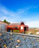 Cabernet sauvignon wine grapes and round press Royalty Free Stock Photo