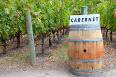 Cabernet sign over wine barrel in vineyard Stock Photography