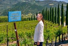 Cabernet - variation för den sauvignon vindruvan undertecknar in vingården arkivbild