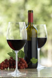 Cabernet wine. Sharp glass in foreground, grapes,bottle and second glass in background, outdoors Stock Photography